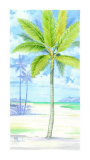Palm Island II