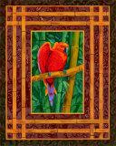 Mandarine Lovebird