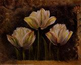 Triple Tulip II