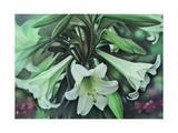 Easter Lillies by Kirsten Soderlind