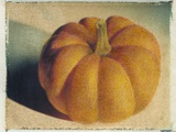 Pumpkin