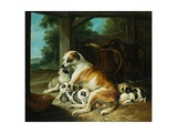 A Mother with Her Puppies