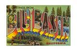 Postcard of Big Basin  Redwood State Park