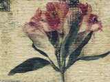 Stamp and Flower