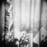 Curtain with Flower Shadow