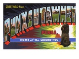 Greeting Card from Punxsutawney  Pennsylvania