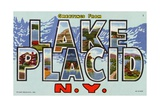 Greeting Card from Lake Placid  New York
