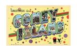 Greetings from Coney Island  New York Postcard