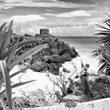 ¡Viva Mexico! Square Collection - Tulum Ruins along Caribbean Coastline with Iguana II