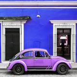 ¡Viva Mexico! Square Collection - VW Beetle Car - Royal Blue & Purple
