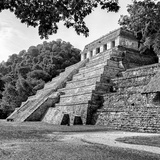 ¡Viva Mexico! Square Collection - Temple of Inscriptions in Palenque VI