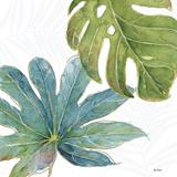 Tropical Blush VII