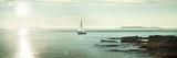 Evening Sail Crop