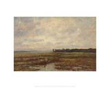 Potomac Marsh