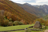 Traditional Thatched Hut  Brana De Fuexu  Valle Del Lago  Somiedo Np Asturias  Spain