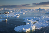 Greenland  Disko Bay  Ilulissat  Elevated View of Floating Ice