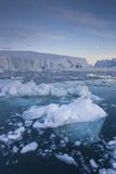 Greenland  Disko Bay  Ilulissat  Floating Ice at Sunset with Moonrise