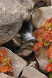 A Small Waterfall   California's Sierra Nevada Mountain Range