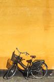 Denmark  Zealand  Copenhagen  Yellow Building Detail with Bicycle
