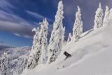 First Tracks on Evans Heaven on Sunny Powder Morning at Whitefish Mountain Resort  Montana