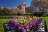 Spring Flowers and Historic Crown Mills Building  Dunedin  Otago  South Island  New Zealand