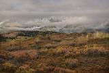 Colorado  Uncompahgre National Forest Autumn Snowstorm Above Sneffels Range