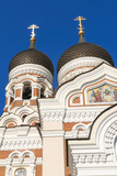 Russian Orthodox Alexander Nevsky Cathedral in Toompea  Old Town  Tallinn  Estonia  Baltic States