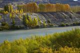 Autumn Colour at Bannockburn  and Kawarau Arm of Lake Dunstan  South Island  New Zealand