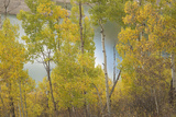 Colorado  Uncompahgre National Forest Silver Jack Reservoir and Fall Aspens