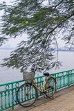 Vietnam  Hanoi Tay Ho  West Lake  Bicycle