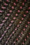 Spain  Canary Islands  Lanzarote  La Geria Wine Region  Winery Interior