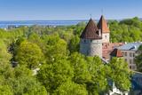 View of Tallinn from Toompea Hill  Old Town of Tallinn  Estonia  Baltic States