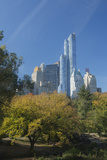 High-Rise Buildings Along from Inside Central Park on a Sunny Fall Day  New York
