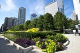 Illinois  Chicago  Millennium Park  Chase Promenade