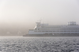 Washington State  Puget Sound Ferry Emerges from Dense Fog