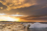 Polar Bear and Young Cub Cling to Melting Sea Ice at Sunset Near Harbor Islands Canada