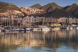 Spain  Canary Islands  Tenerife  Santa Cruz De Tenerife  City View from the Port  Morning