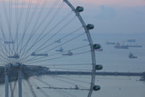 Singapore  Singapore Flyer  Giant Ferris Wheel  Elevated View  Dawn