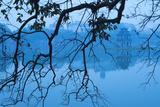 Vietnam  Hanoi Hoan Kiem Lake and Thap Rua  Turtle Pagoda