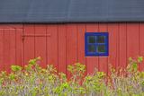 Denmark  Jutland  Gamle Skagen  Old Skagen  Red House Detail