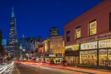 City Lights Bookstore at Dusk   San Francisco  California