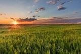 Sunset over Prairie Grasslands in Badlands National Park  South Dakota  Usa
