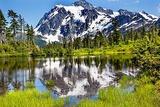 Picture Lake Evergreens Mount Shuksan Mount Baker Highway Snow Mountain Trees  Washington State