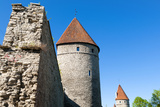 The Old City Walls of the Old Town of Tallinn  Estonia  Baltic States