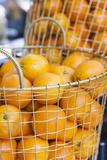 Denmark  Zealand  Copenhagen  Torvehallerne Kph  Oranges