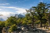 Trek Up to Mount Fitzroy from UNESCO World Heritage Site El Chalten  Argentina  South America