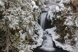 Falls Creek in Winter Near Nelson  British Columbia  Canada