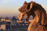 Looking Out over City  Paris  France from Roof  Notre Dame Cathedral with a Gargoyle in Foreground