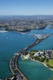 Judges Bay  Tamaki Drive and Waitemata Harbour  Auckland  North Island  New Zealand
