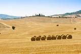 Countryside Near Gallina  Siena Province  Tuscany  Italy